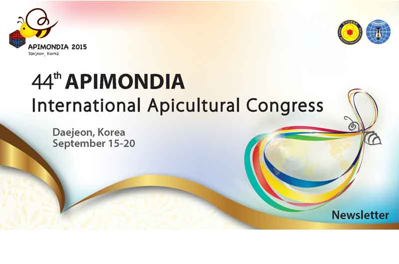 Apimodia-Log-Newsletter