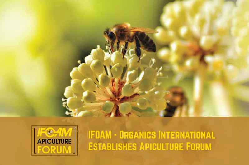 IFOAM Imkereiforum