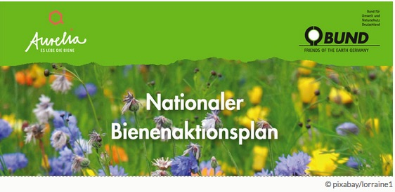 Nationaler-Aktionsplan