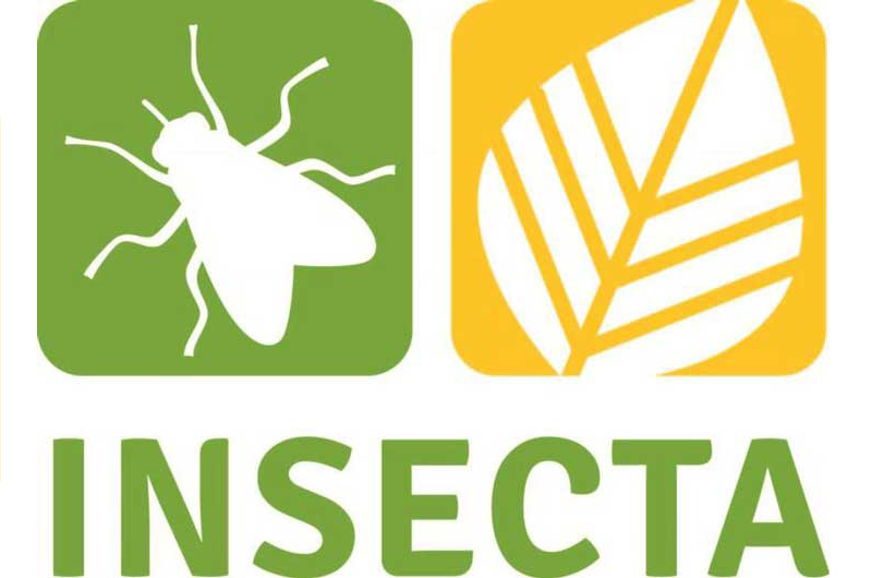 www.insecta-conference.com