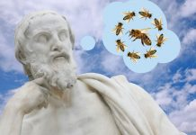 Aristoteles war Imker und sah, dass die Bienen tanzten. Weitere berühmte Imker sind George Washington oder Morgan Freeman. Fotos: Daniel Prudek - stock.adobe.com / belleepok - stock.adobe.com